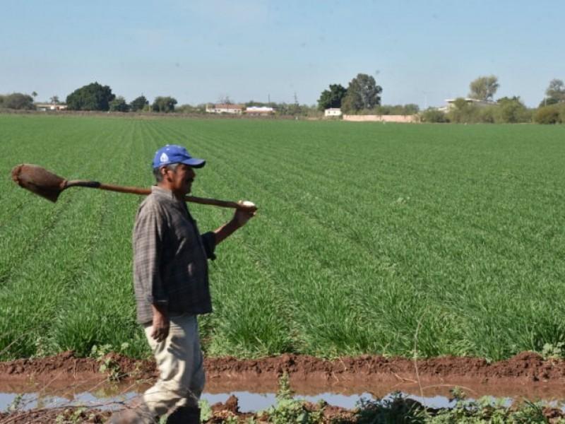 Sequía y recortes: El mayor reto para los agricultores