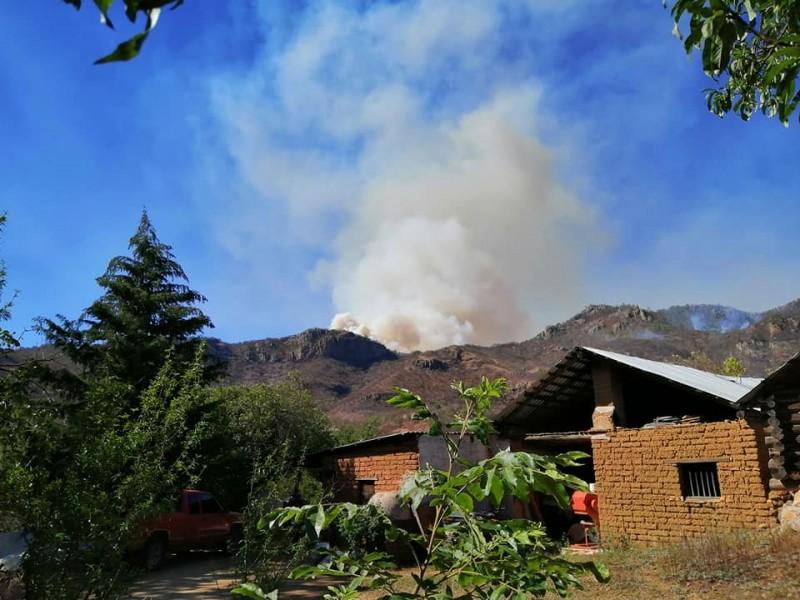 ¡Sierra de Álamos en llamas! Mil hectáreas afectadas por incendio