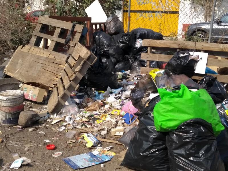 Siguen problemas de basura en Carrillo