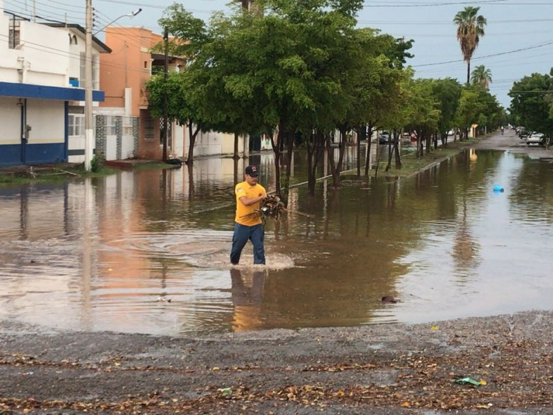 Sin afectaciones mayores por lluvia en Ahome