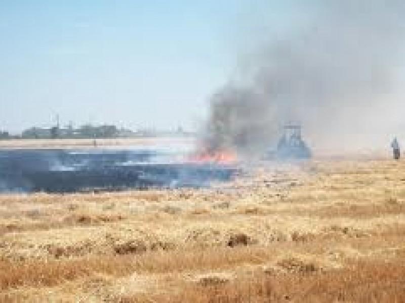 ¡Sin control! las quemas de gavilla en Etchojoa