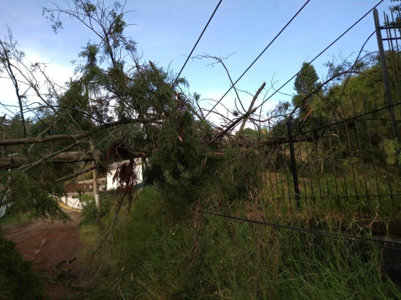 Sin daños graves por fuertes lluvias en Xalapa este martes