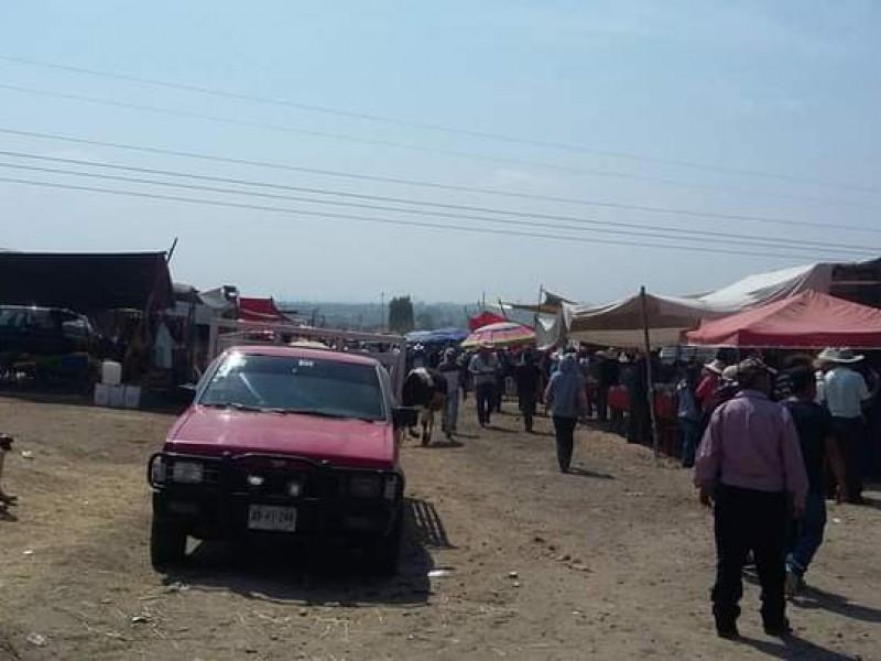 Sin importar restricciones se instala tianguis ganadero en Villa Alta