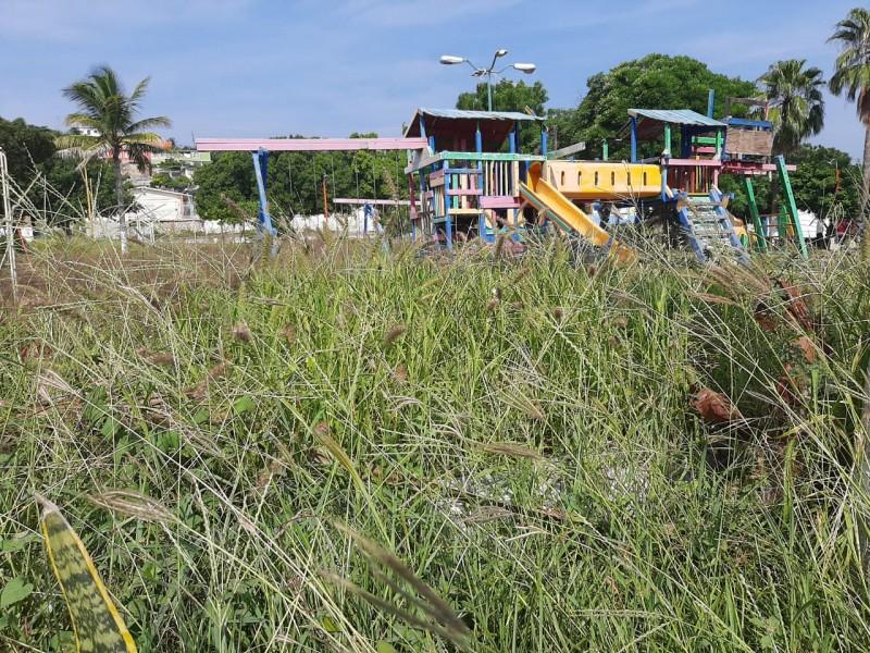Sin mantenimiento ni atención se encuentran parques de Salina Cruz