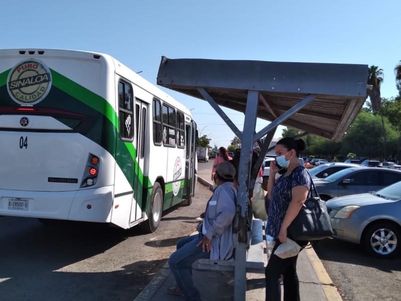 Sinaloa con las tarifas más altas en transporte urbano
