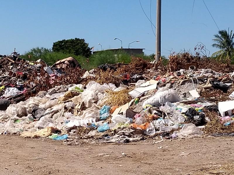 Sinaloa este 2019 busca reducir consumo de plástico