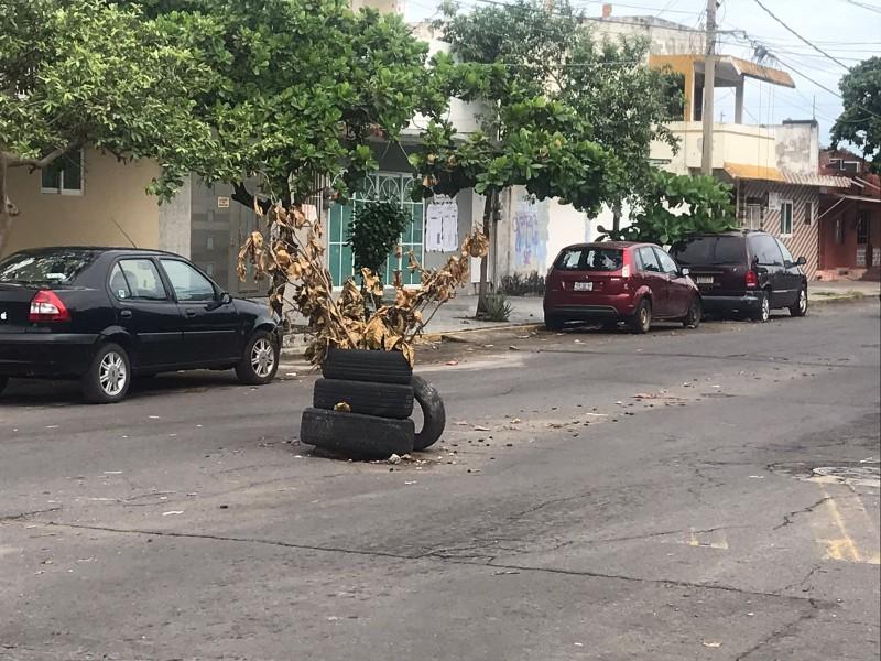Socavón en la calle Guadalupe Victoria en Veracruz