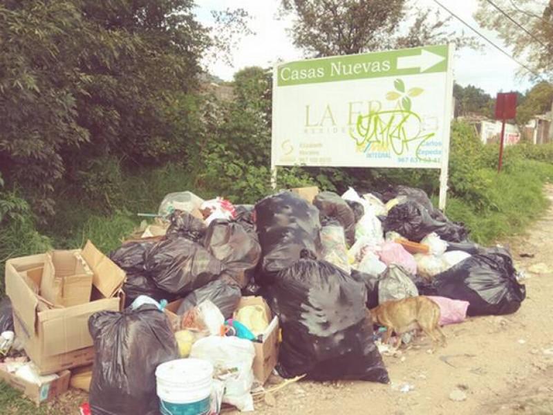 Sociedad civil busca soluciones al problema de basura en SCLC