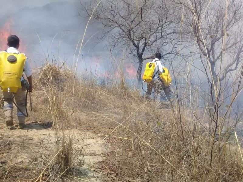 Sofocan autoridades de PC incendio en Jitotol