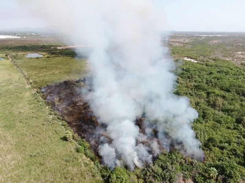 Sofocan impresionante incendio de maleza en Empalme