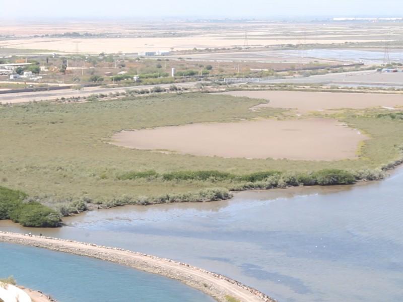 Solicitan visita de Convención Ramsar a Topolobampo