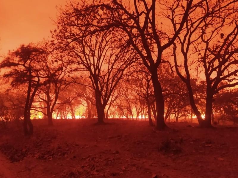 Son ya 17 horas de incendio en La Primavera