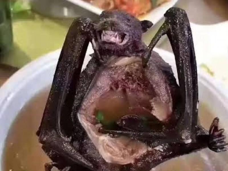 Sopa de murciélago; posible causante del Coronavirus