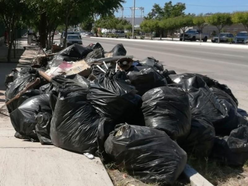 Sudcalifornianos generan más de medio kilo de basura al día