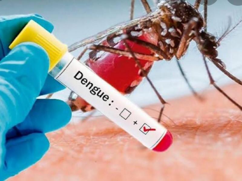 Suma Jalisco 37 muertes por dengue