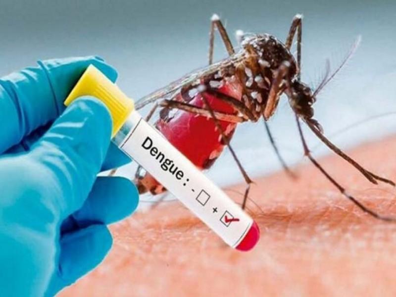 Suman 3 muertos y 101 casos de dengue en Colima