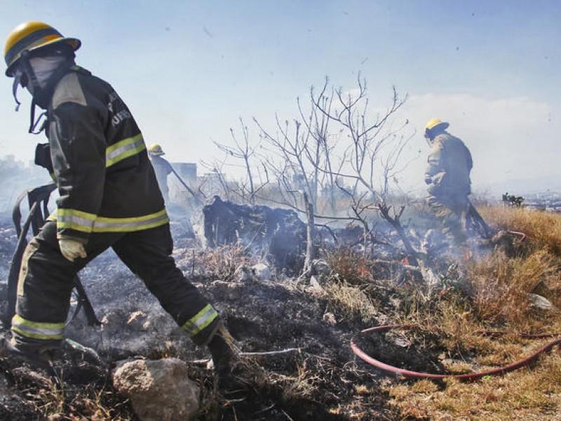 Suman 540 incendios en predios baldíos de la capital queretana