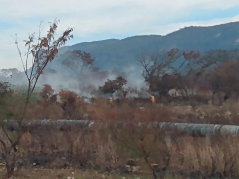 Suman 8 incendios en Áreas Naturales Protegidas