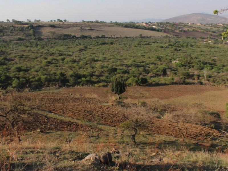Suspenden actividades en zona arqueológica de Jiquilpan