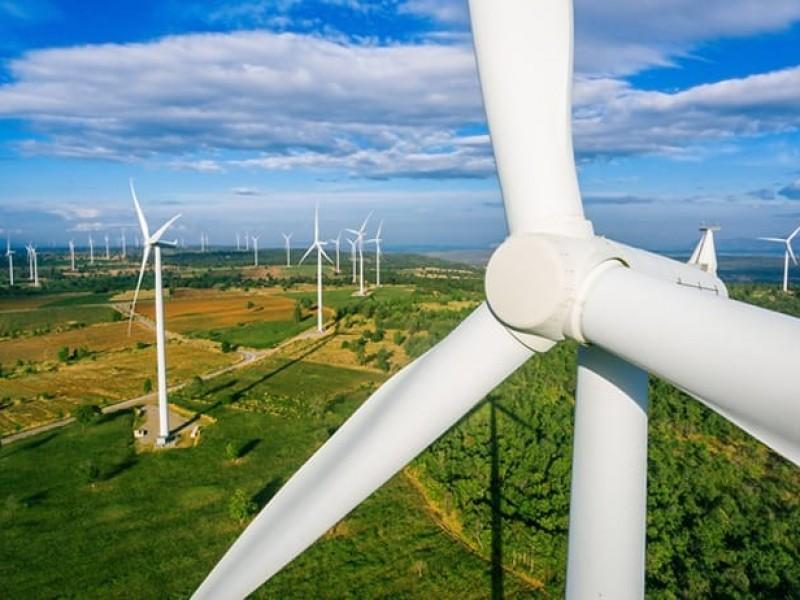 Suspenden proyecto eólico en el istmo, Tribunal Colegiado concede Amparo