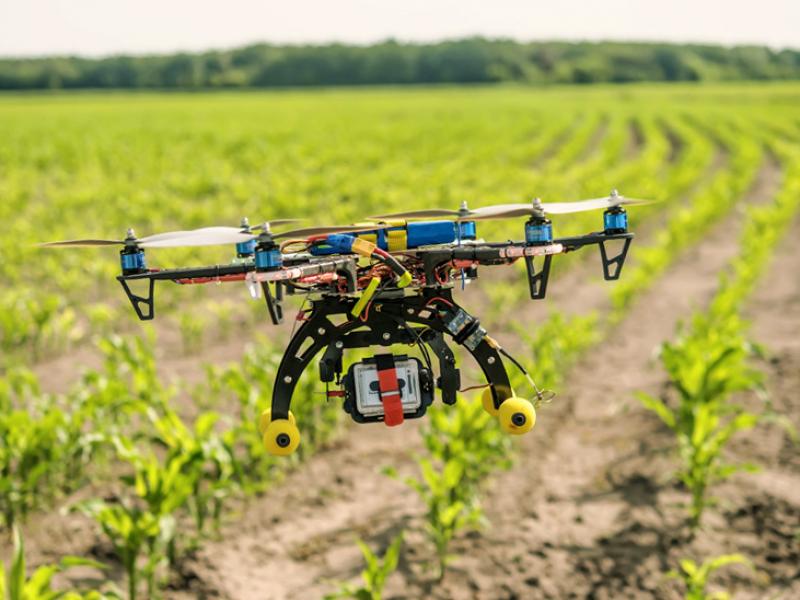 Tecnología, oportunidad de crecimiento para pequeños productores