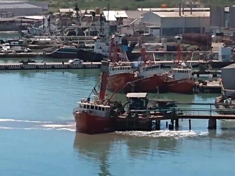 Termina paro técnico y se reactiva flota sardinera