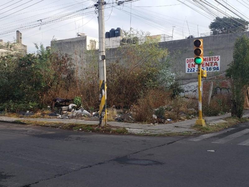 Terreno baldío, foco de infección para vecinos de Chula Vista