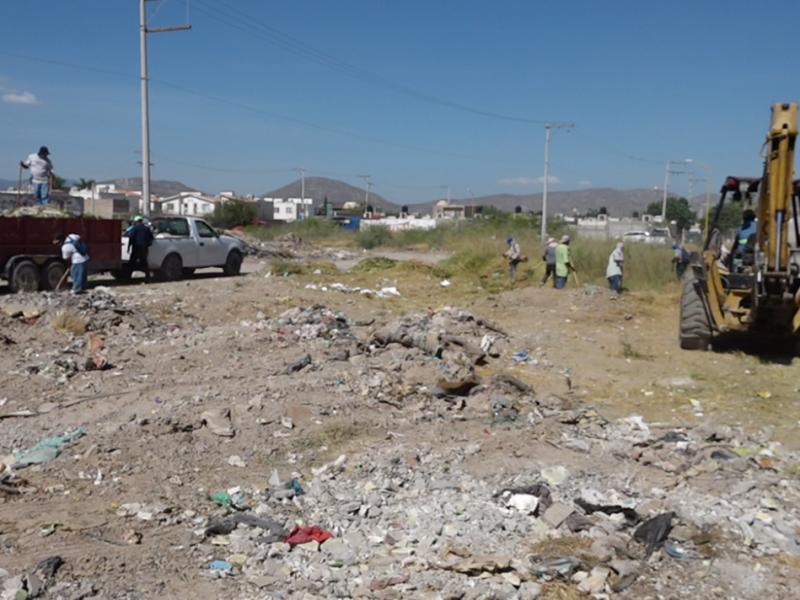 Terrenos baldíos se convierten en basureros