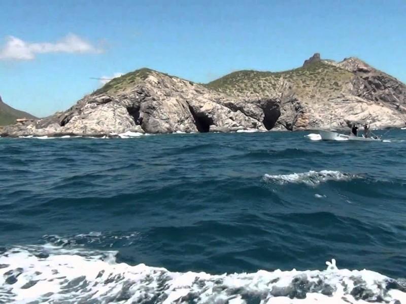 Trabajan en conservación de Isla San Pedro