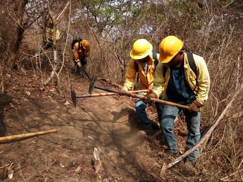 Trabajo en conjunto para evitar incendios por programa federal