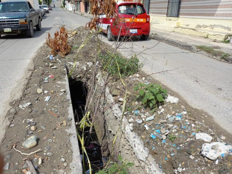 Trabajos abandonados en la colonia Anáhuac de Tuxpan