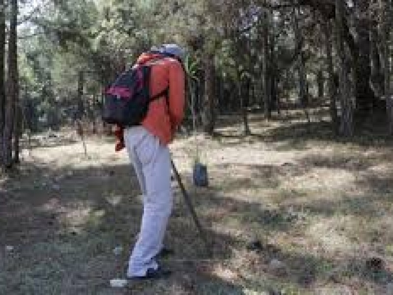 Trabajos de reforestación por generar incendio