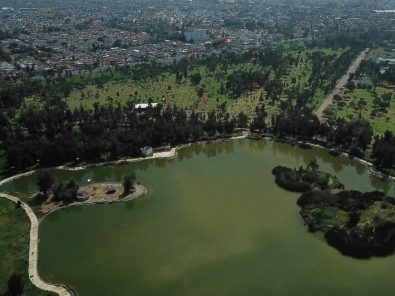 Transformación del Bosque de Aragón