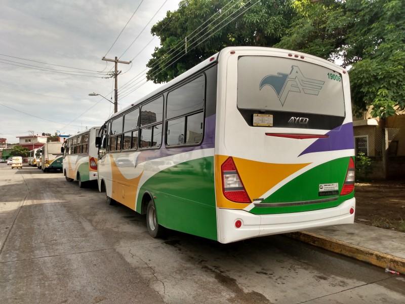 Transporte federal reanuda gradualmente sus actividades