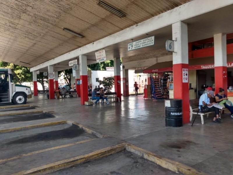 Transportistas y comerciantes recienten falta de pasajeros en Los Rojos
