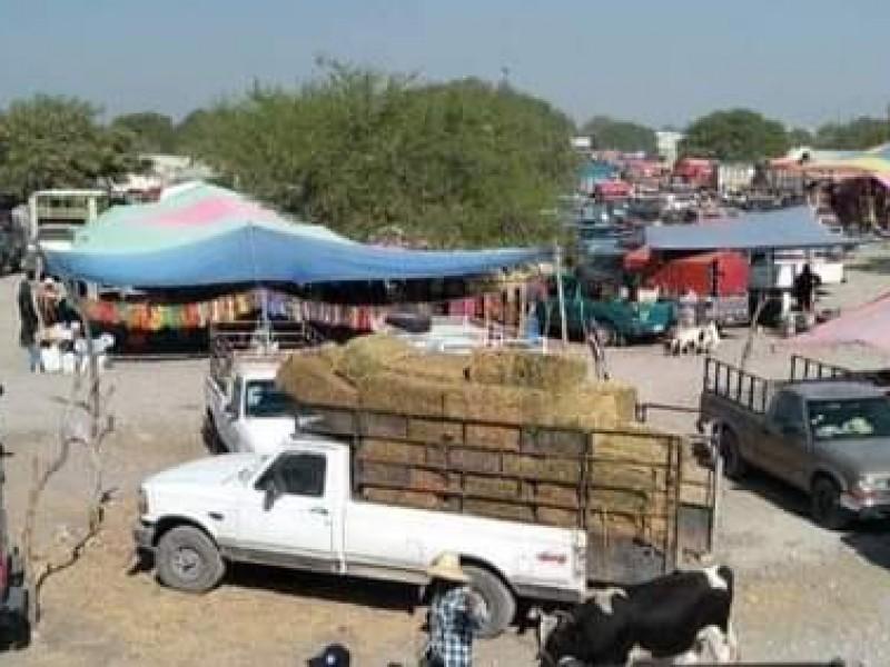 Tras decreto, suspenden plaza de animales en Yehualtepec
