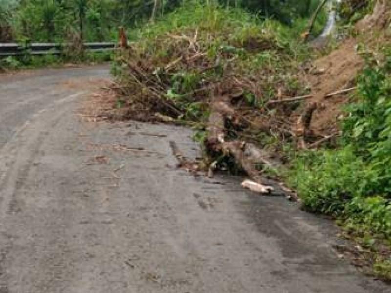 """TT """"Cristóbal"""" provoca deslaves en Chiapas. Seguirá lloviendo"""