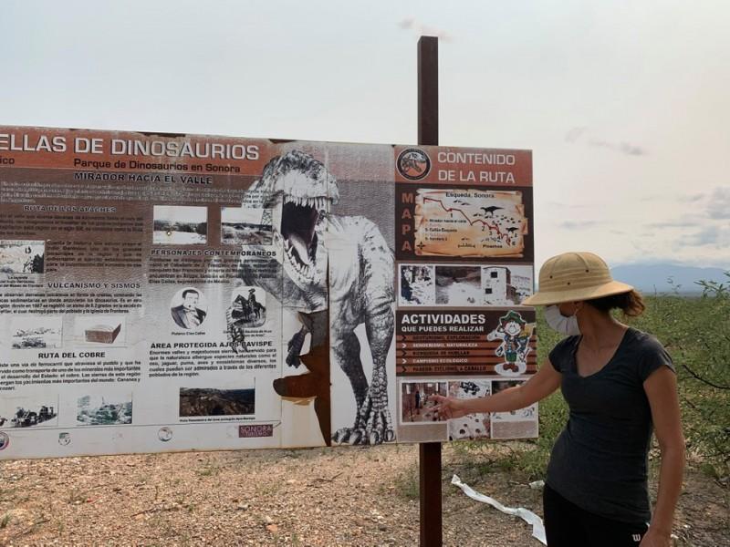 Turismo se recupera poco a poco en Sonora