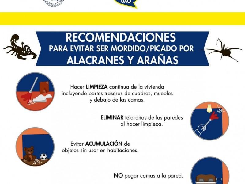 UAQ Y PC invitan a prevenir picaduras