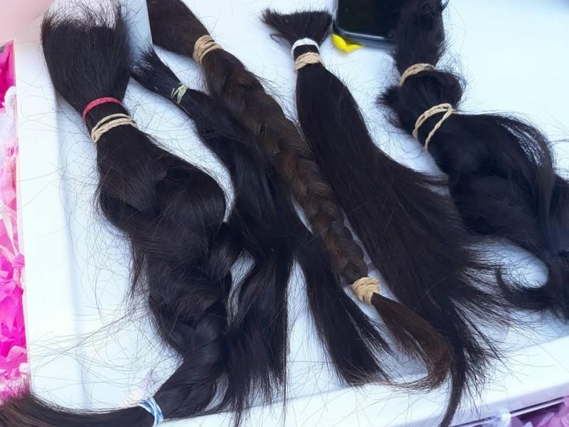 Universitarios recolectan cabello para niños que padecen cáncer