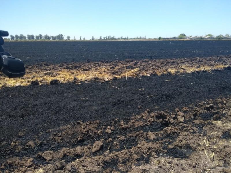 Urge cambiar a un estado agroecológico