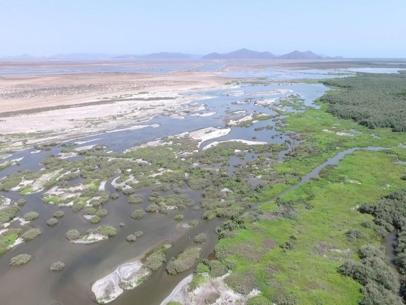 Urge se legisle para frenar contaminación en Bahía de Ohuira