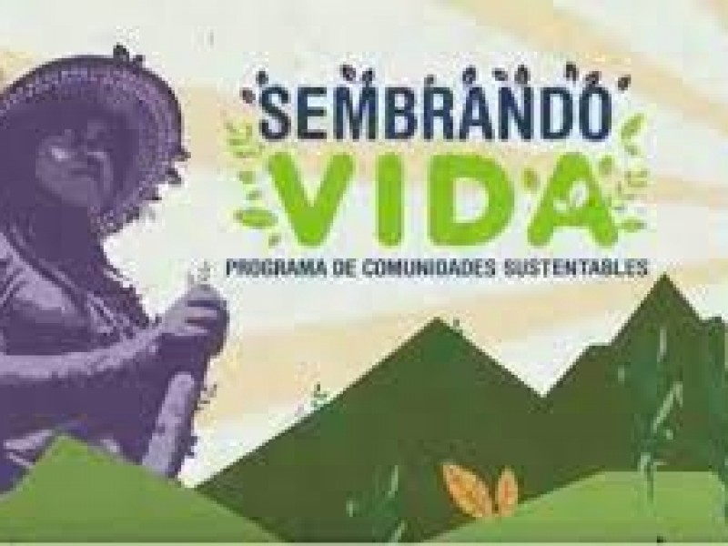 Valle de Guaymas-Empalme excluido de programa