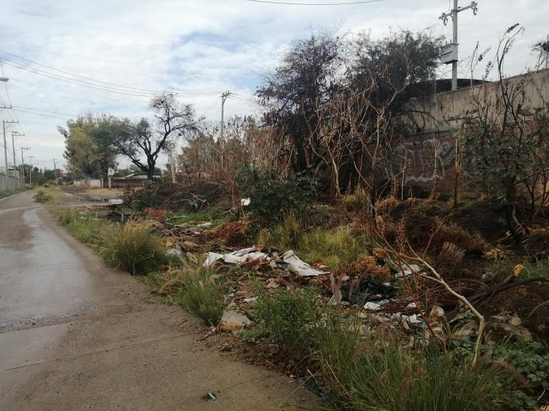 Vecinos de la colonia Albazul reportan acumulación de basura