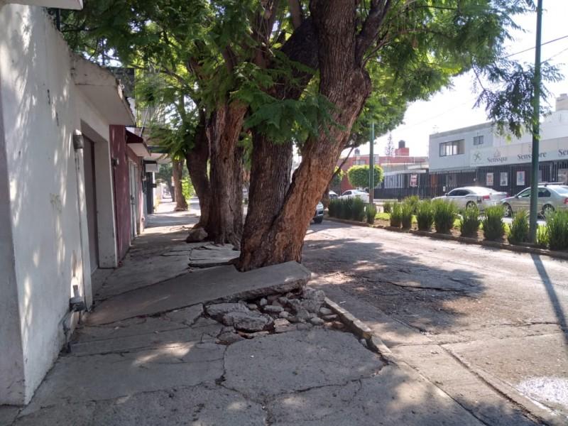 Vecinos de la colonia Andrade reportan pavimento dañado