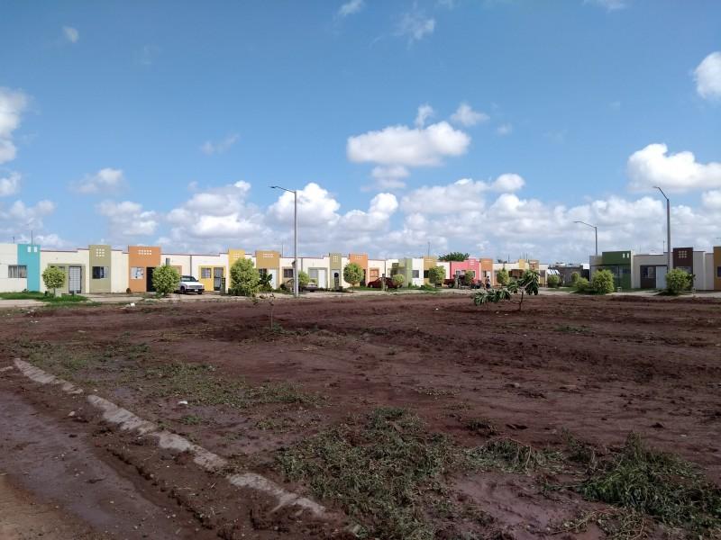 Vecinos de Las Canteras luchan por áreas verdes