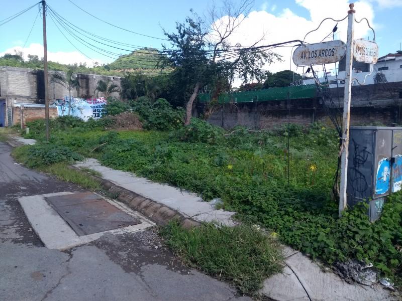 Vecinos de los arcos cerrarán la avenida Zapopan