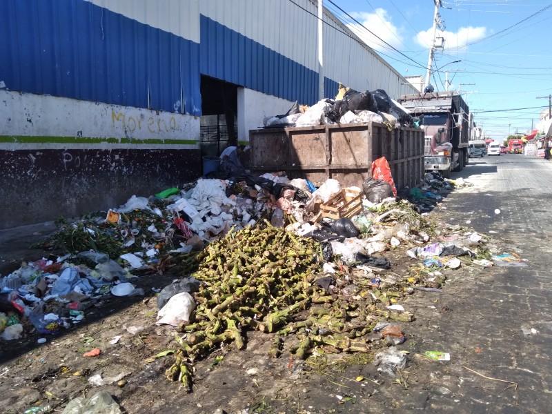 Vecinos de otras colonias están dejando basura en la Purísima
