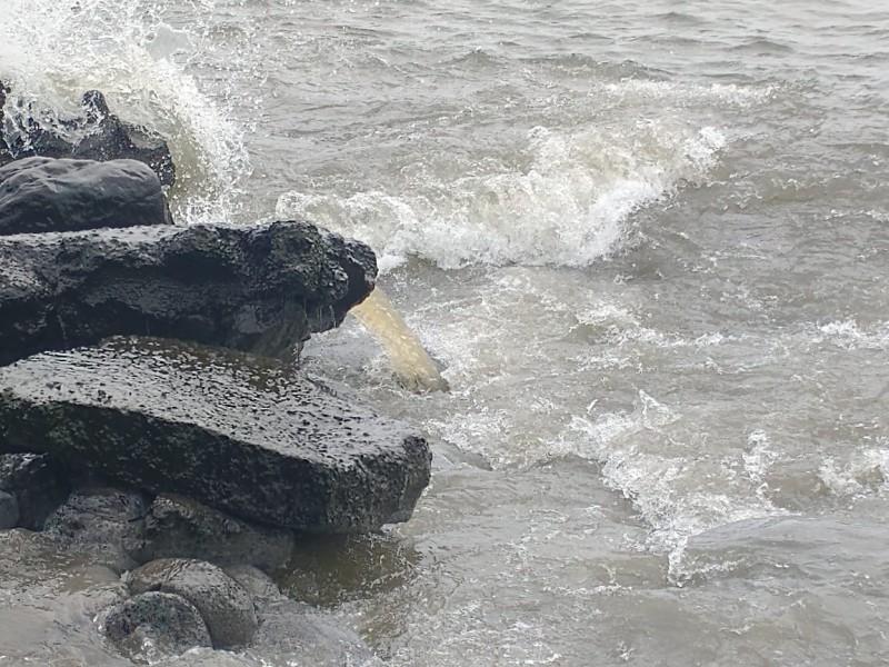 Vecinos denuncian descarga de aguas negras al Río Jamapa.