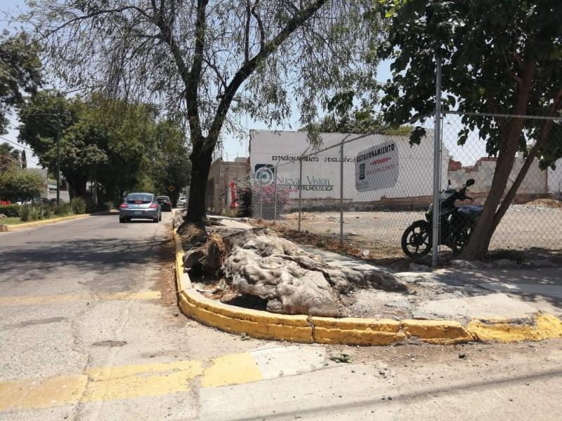 Vecinos reportan pavimento dañado en la Andrade